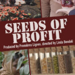 semena zisku seeds of profit