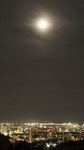 vo svetle noci light of the night