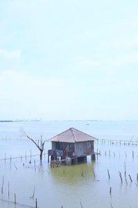 stoupajici hladina ndash po nas potopa 66 metres ndash rising sea levels